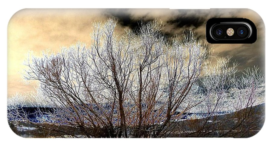 Touch Of Frost IPhone X Case featuring the digital art Touch Of Frost by Will Borden