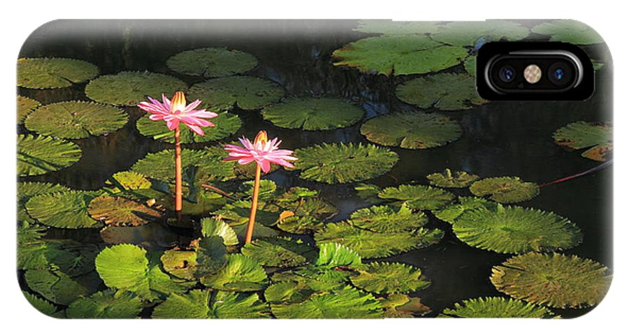 St. Louis IPhone X Case featuring the photograph Tower Grove Park Water Lilies by Scott Rackers