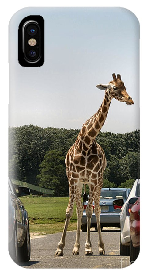 Giraffe IPhone X Case featuring the photograph Traffic Jam by Art Dingo