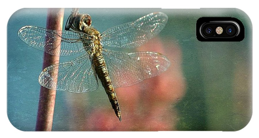 Dragonfly IPhone X Case featuring the photograph Tranquil by Fraida Gutovich
