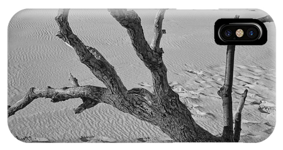 Art IPhone X Case featuring the photograph Tree Branch And Footprints On Sleeping Bear Dunes by Randall Nyhof