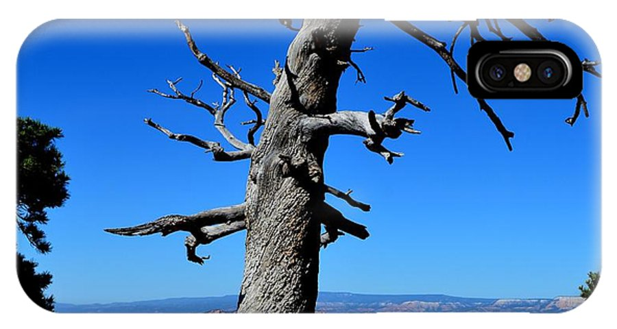 Landscape IPhone X Case featuring the photograph Tree by Mark Bowmer