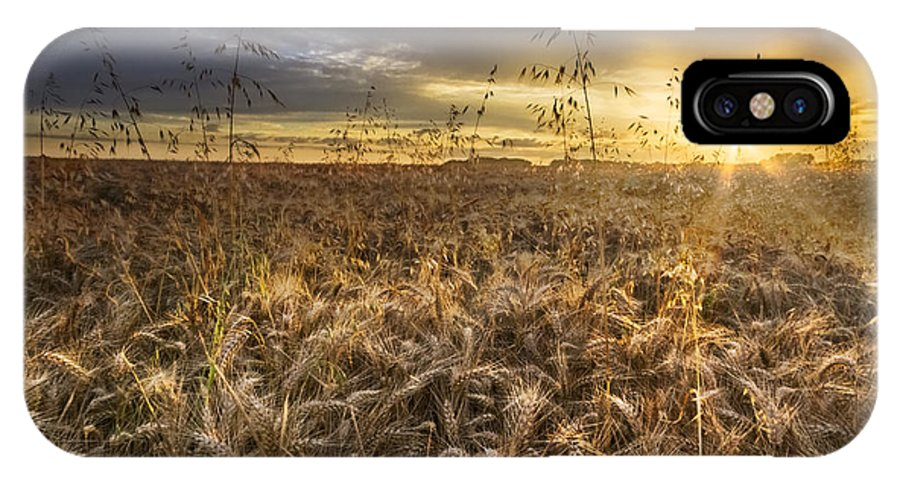 Appalachia IPhone X Case featuring the photograph Tumble Wheat by Debra and Dave Vanderlaan