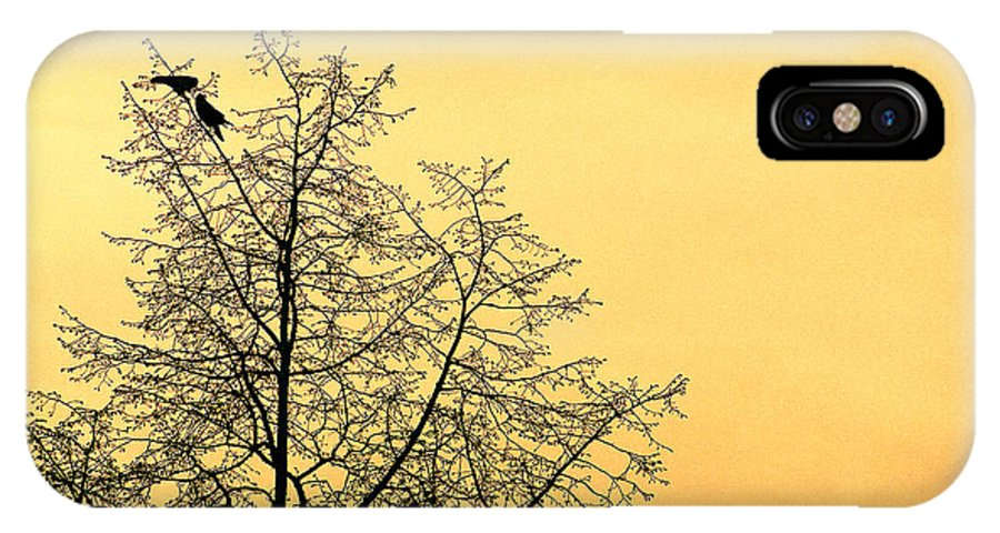 Two Birds In A Tree IPhone X Case featuring the photograph Two Birds In A Tree by Mike Penney