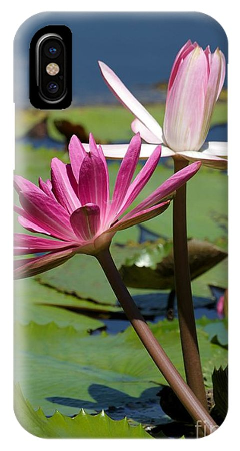 Pink IPhone X Case featuring the photograph Two Graceful Water Lilies by Sabrina L Ryan