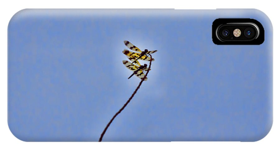 Dragonflies IPhone X Case featuring the photograph Two-of-a-kind by Douglas Barnard