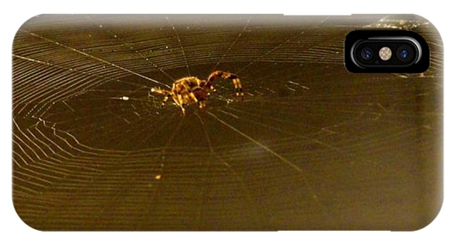 Spider IPhone X Case featuring the photograph Waiting Spider by Meandering Photography