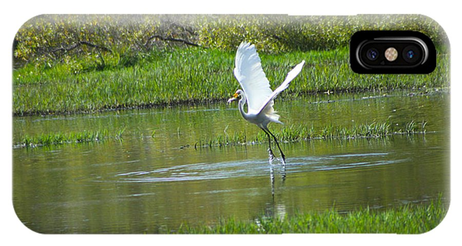 Egret IPhone X Case featuring the photograph Water Dancer by Diana Haronis