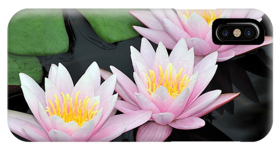 Water Lilies IPhone X Case featuring the photograph water lily 88 Sunny Pink Water Lily with Reflection by Terri Winkler