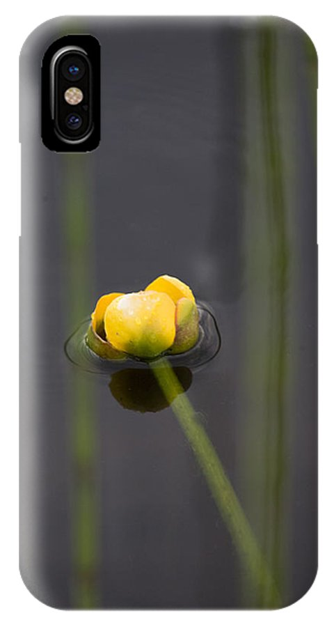 Water IPhone X Case featuring the photograph Water Lily by Mark Duffy