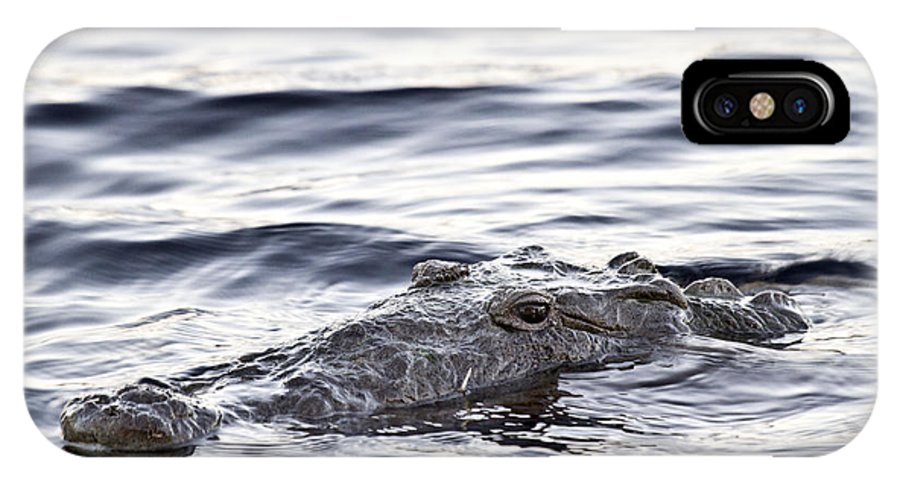 Crocodile IPhone X Case featuring the photograph What I See by Rodney Cammauf