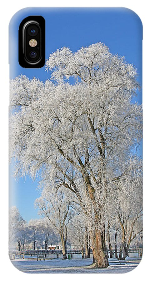 White IPhone X Case featuring the photograph White Frost Tree by Ralf Kaiser