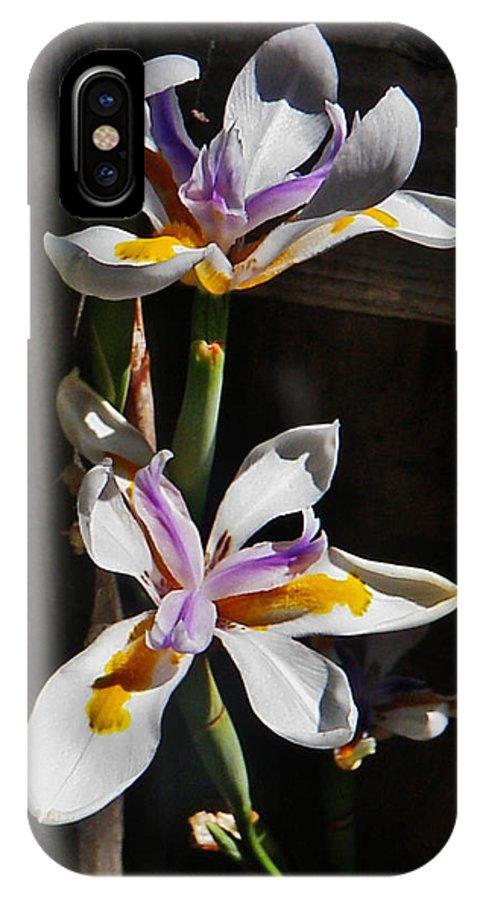 White Irises IPhone X Case featuring the photograph White Irises by Daniele Smith