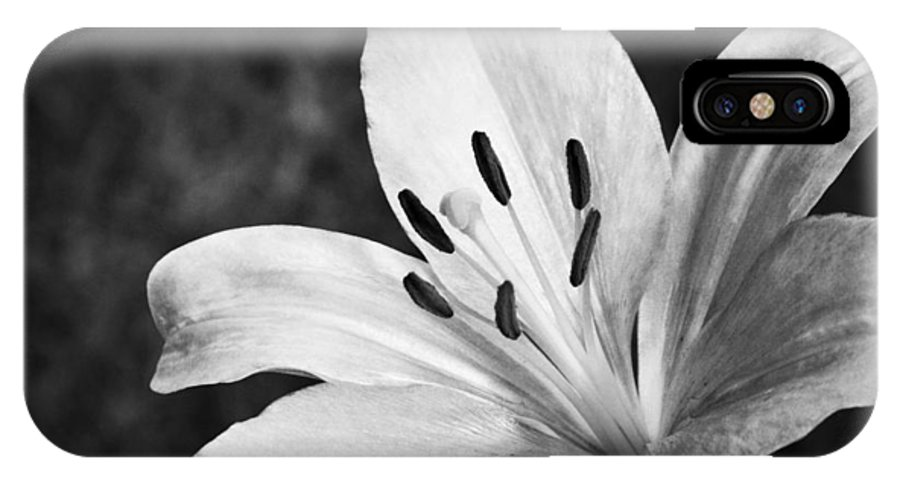 White Lilly IPhone X Case featuring the photograph White Lilly by Saija Lehtonen