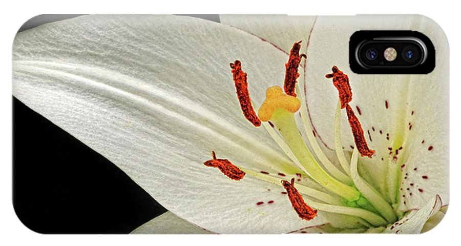 Lily IPhone X Case featuring the photograph White Lily by Dave Mills