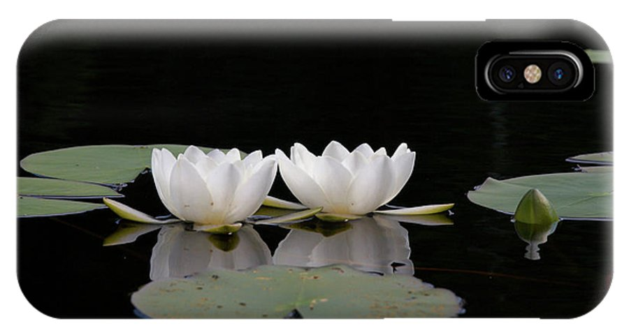 Lehtokukka IPhone X Case featuring the photograph White Water-lily 6 by Jouko Lehto