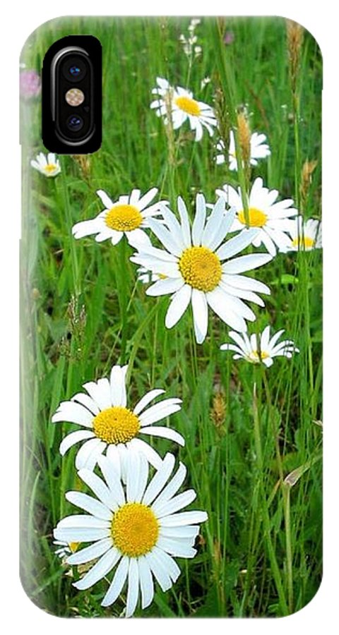 Flowers IPhone X Case featuring the photograph Wild Flowers by April Patterson