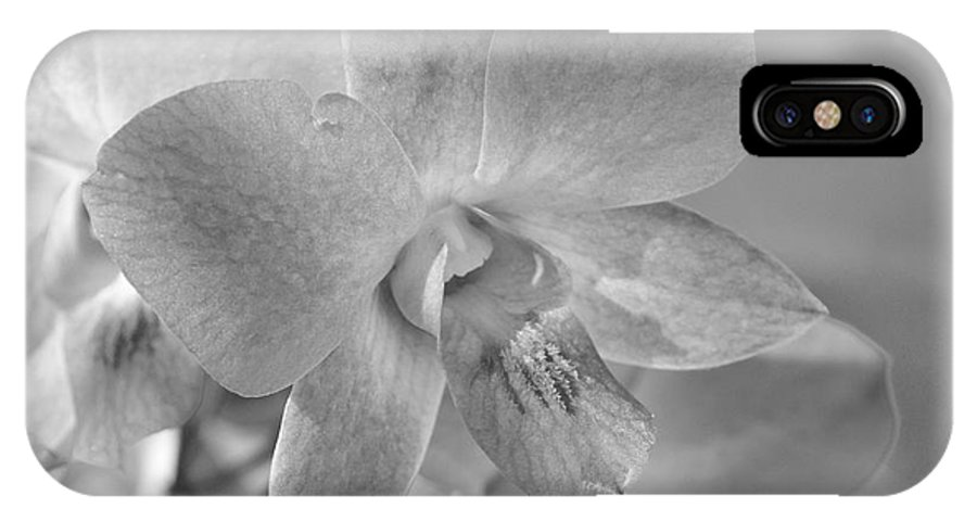Bronstein IPhone X Case featuring the photograph Wild Maui Orchid by Sandra Bronstein