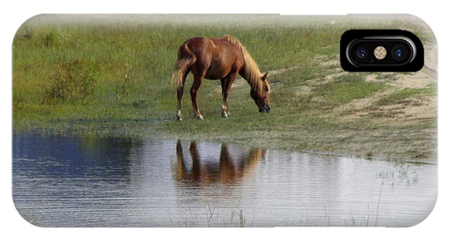 Wild IPhone X Case featuring the photograph Wild Spanish Mustang by Kim Galluzzo Wozniak