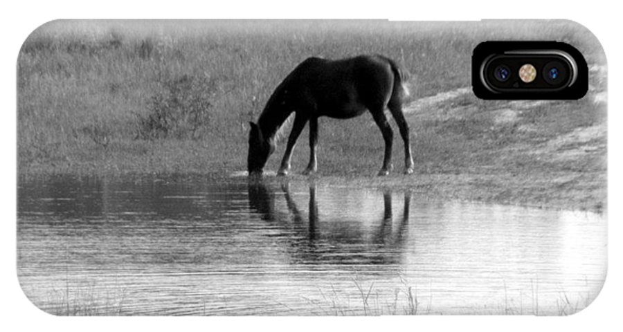 Wild IPhone X Case featuring the photograph Wild Spanish Mustang Of Obx Nc by Kim Galluzzo Wozniak