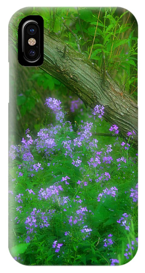 Beautiful IPhone X Case featuring the photograph Wildflower Dreams by Cindy Haggerty