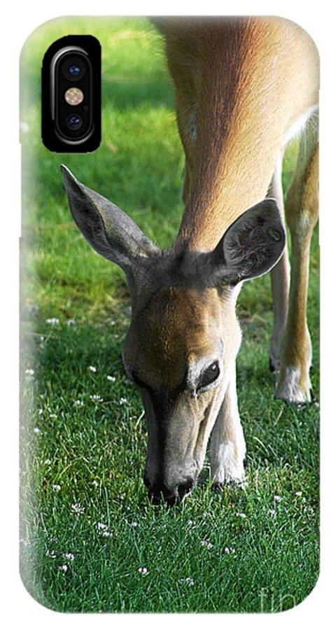 Janie Lynn IPhone X Case featuring the photograph Wildlife Beauty by Janie Johnson