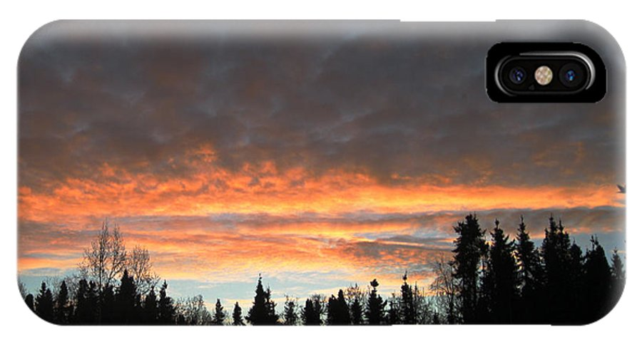 Sunrise IPhone X Case featuring the photograph Willow Sunrise by Donna Quante
