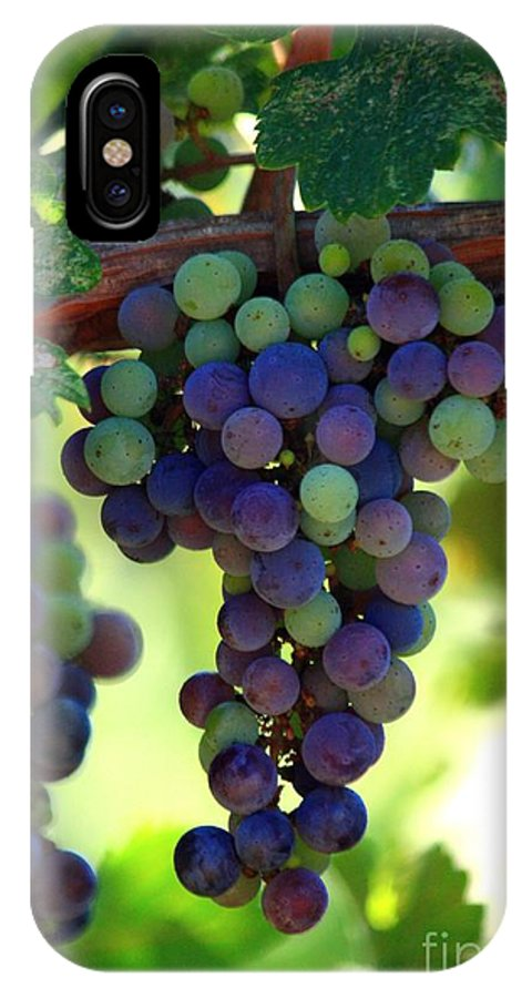 Grapes IPhone X Case featuring the photograph Wine To Be by Patrick Witz