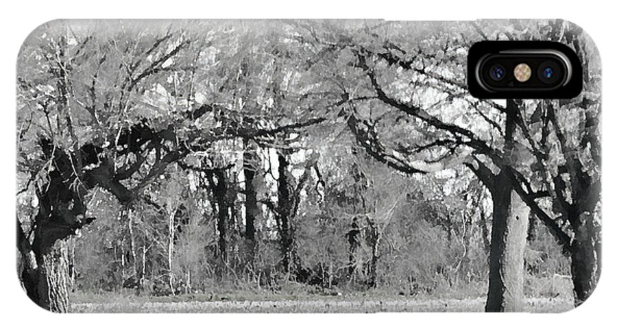 Nature IPhone X Case featuring the photograph Winter At The Edge Of The Woods by Debbie Portwood