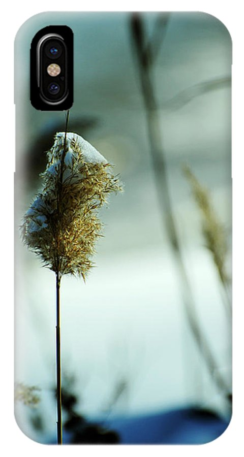 chesapeake Bay IPhone X Case featuring the photograph Winter Music by Rebecca Sherman