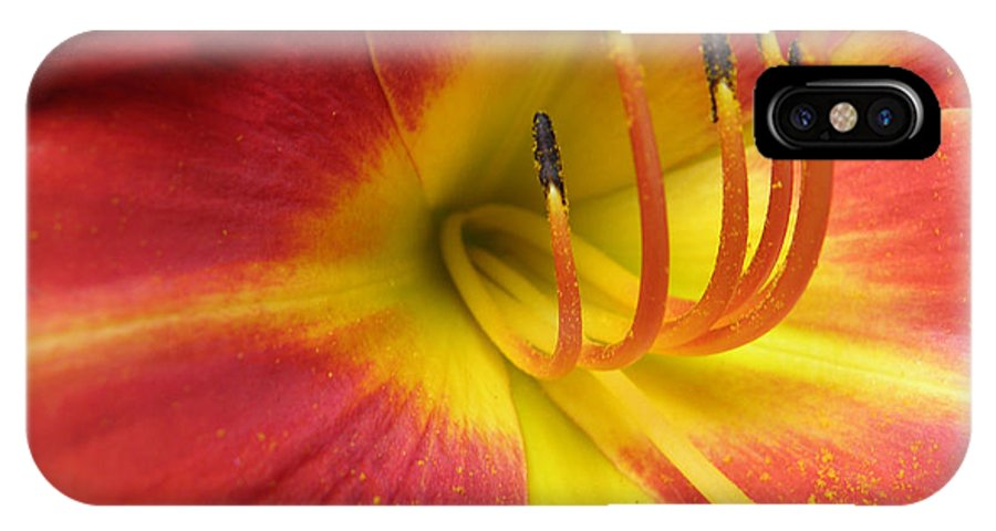 Day Lily IPhone X Case featuring the photograph With Great Detail by Kim Galluzzo Wozniak
