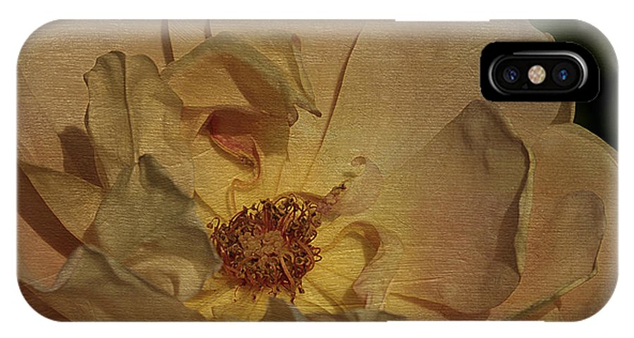Flower IPhone X / XS Case featuring the photograph Withering Rose by Deborah Benoit