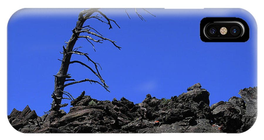 Tree IPhone X Case featuring the photograph Wreckage by Jeremiah Welsh