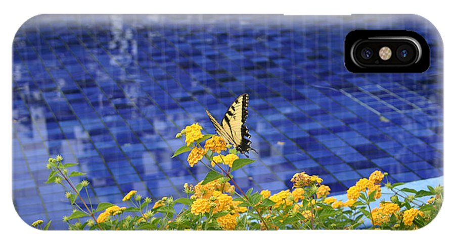 Bug IPhone X / XS Case featuring the photograph Yellow Against Blue by Nina Fosdick