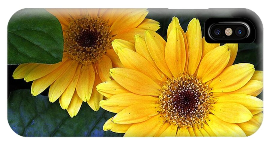 Flowers IPhone X Case featuring the digital art Yellow Dahlias by Dale  Ford