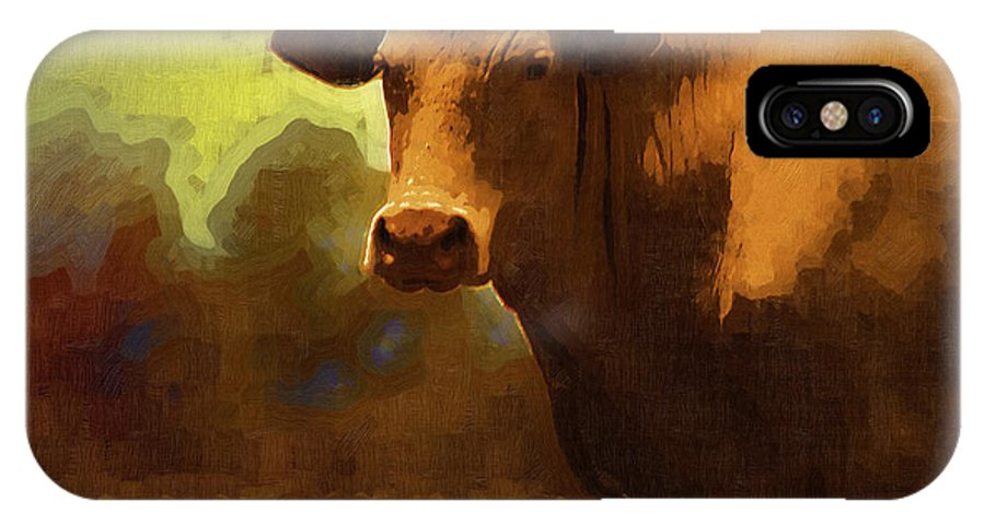 Cow IPhone X / XS Case featuring the photograph You Can Not Cow Me by Kathy Clark