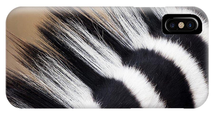 Fn IPhone X Case featuring the photograph Zebra Equus Quagga Mane, Khama Rhino by Vincent Grafhorst