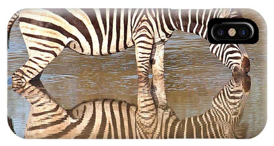 Africa IPhone X Case featuring the photograph Zebra Times Two by George Cathcart
