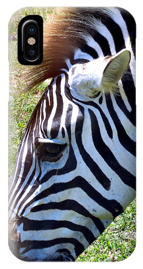 Black IPhone X Case featuring the photograph Zebras by Art Dingo