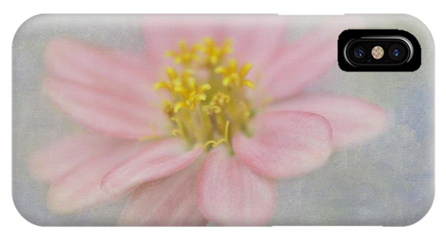Zinnia IPhone X Case featuring the photograph Zinnia In The Garden by Cheryl Butler