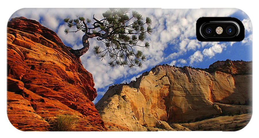 Zion IPhone X Case featuring the photograph Zion Lone Tree by Chris England