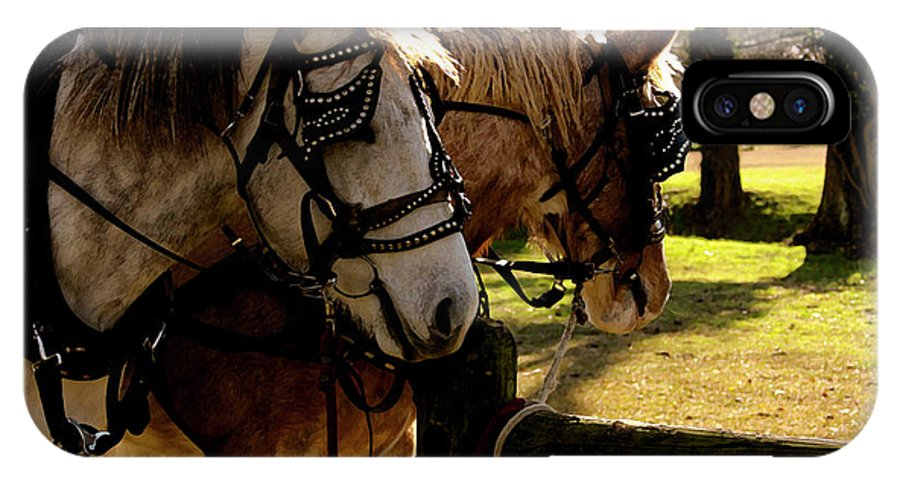 Horses IPhone X Case featuring the photograph Carriage Ride by Kim Henderson