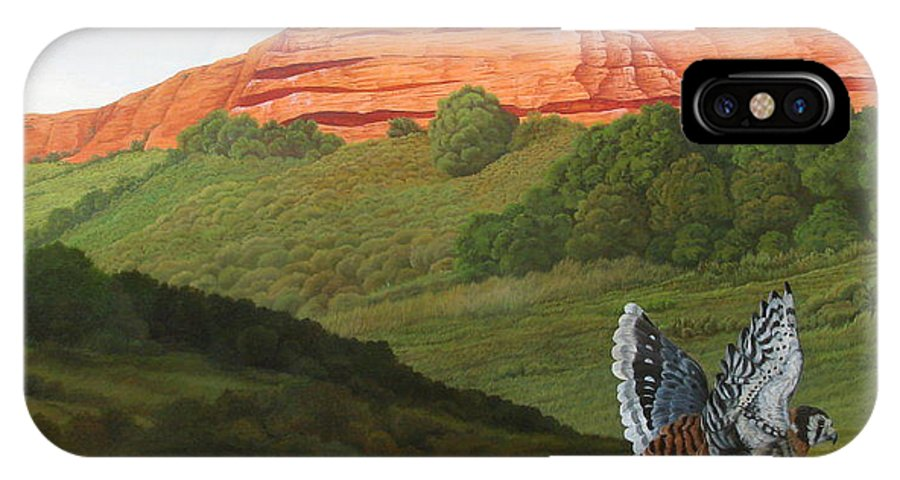 Red Hawk IPhone X Case featuring the painting Ongamira by Juan Enrique Marquez