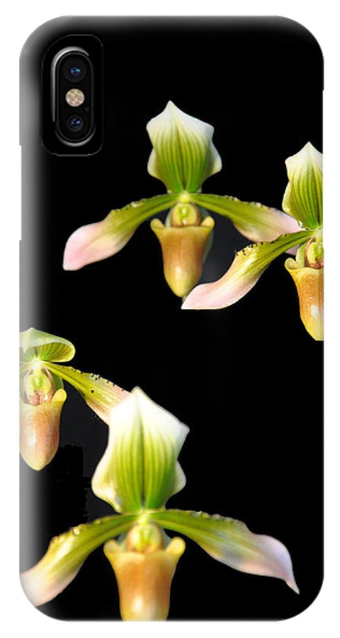 Music IPhone X Case featuring the photograph Orchid Quads by Vijay Sharon Govender
