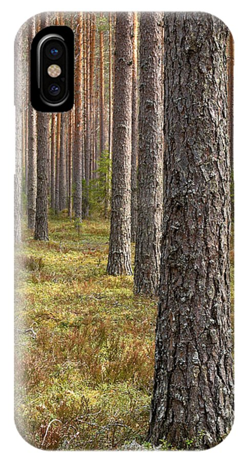 Lehtokukka IPhone X / XS Case featuring the photograph Pine Forest by Jouko Lehto