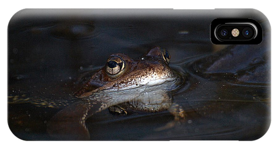 Lehtokukka IPhone X Case featuring the photograph The Common Frog 1 by Jouko Lehto