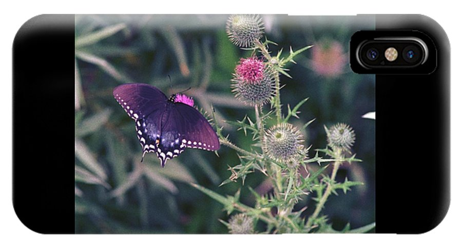Butterfly IPhone X Case featuring the photograph 060207-13 by Mike Davis