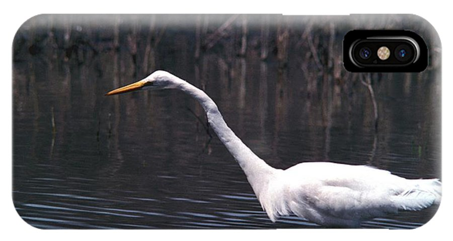 Great Egret IPhone Case featuring the photograph 070406-8 by Mike Davis