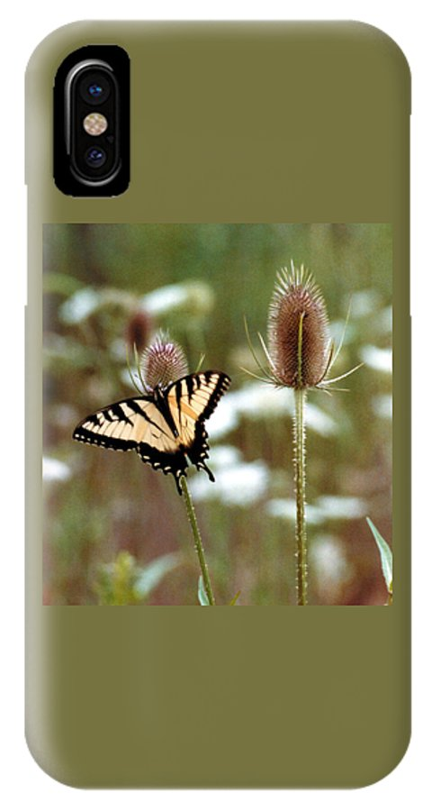 Butterfly IPhone Case featuring the photograph 070406-84 by Mike Davis