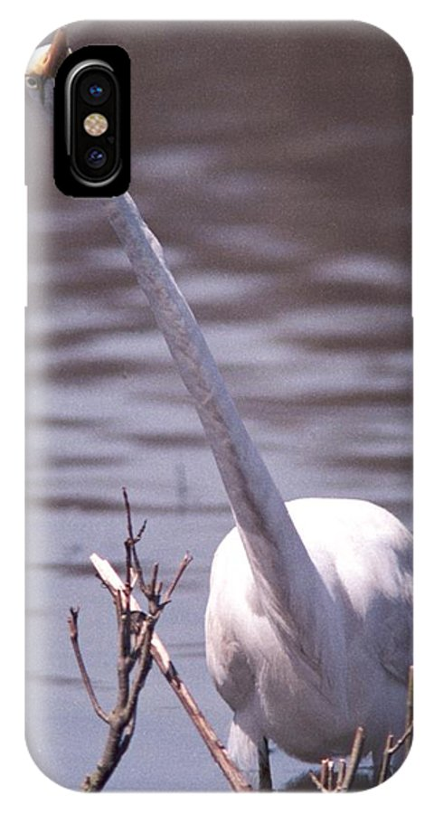 Egret IPhone Case featuring the photograph 070406-9 by Mike Davis